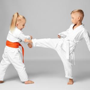 Martial Arts Statesboro Martial Arts  Karate for Kids